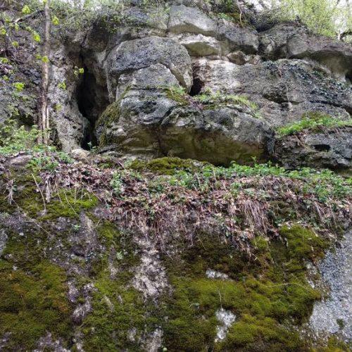 Borzas-hegyi sziklaüreg